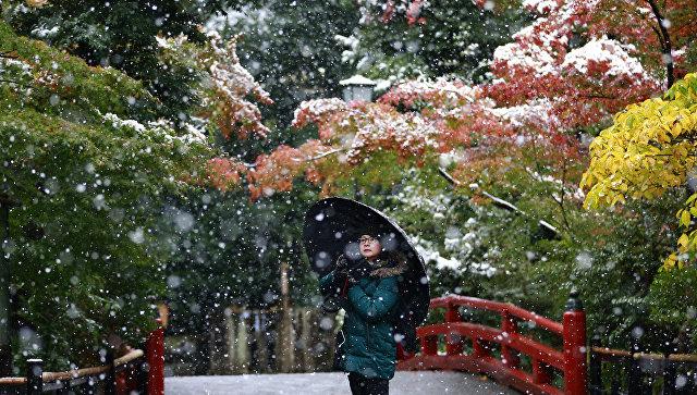 Посетительница Храма Цуругаока-Хатиман-гу во время снегопада в Камакуре, Япония