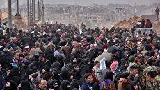 Жители восточных районов Алеппо, Сирия. 29 ноября 2016