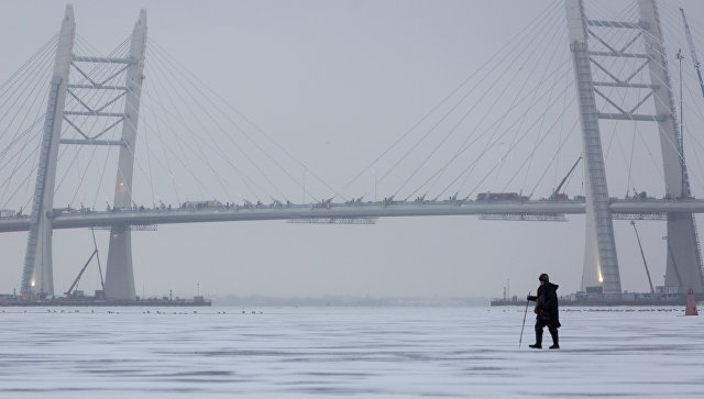 Центральный участок Западного скоростного диаметра в Санкт-Петербурге