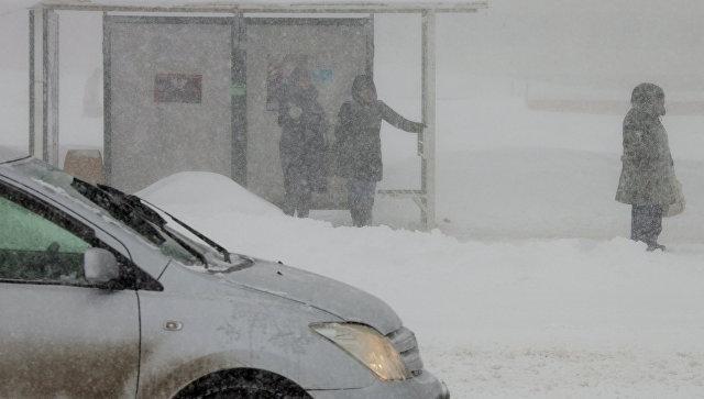 Люди ждут автобуса на автобусной остановке во время снежного циклона. Архивное фото