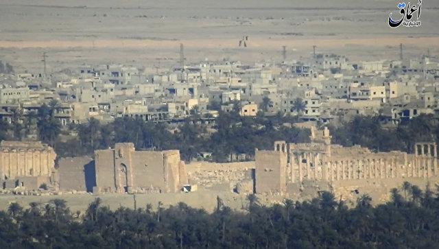 Вид исторической части Пальмиры. Архивное фото