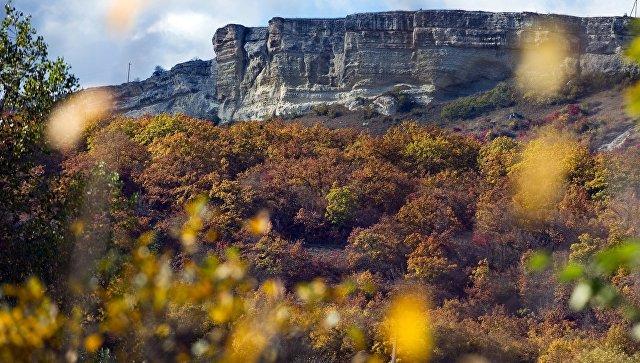 Вид на лес и горы в районе села Трудолюбовка в Крыму