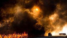 Лесные пожары в США. Архивное фото