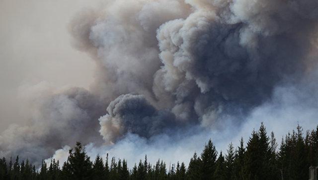 Лесной пожар в Канаде. Архивное фото