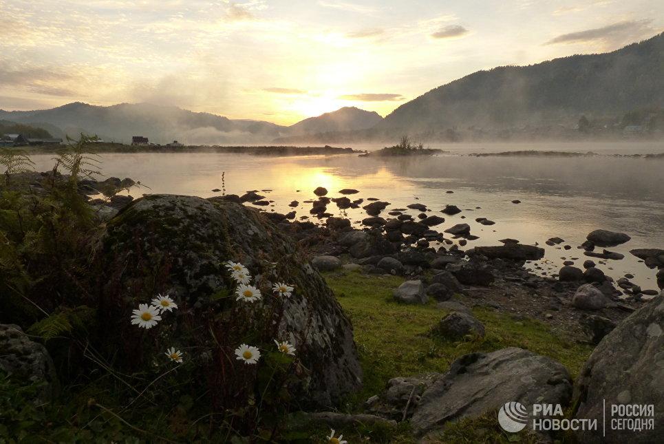 Вид на Телецкое озеро в Республике Алтай