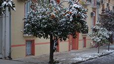 Морозы в Греции