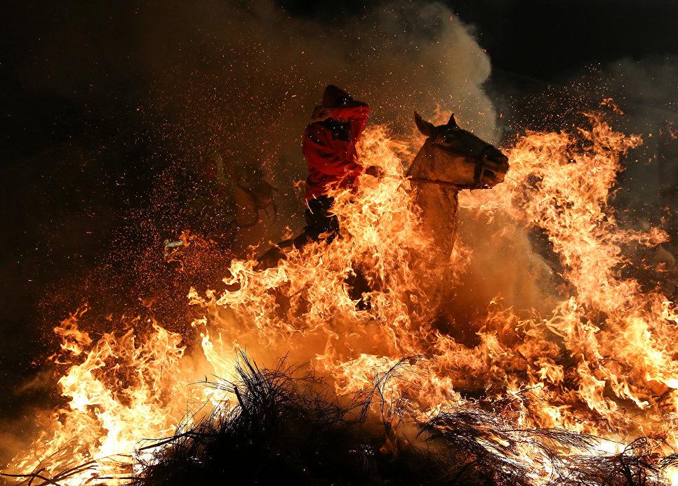 Всадник прыгает через костер во время ежегодного фестиваля Luminarias накануне дня Святого Антония в деревне Сан-Бартоломе-де-Пинарес, Испания