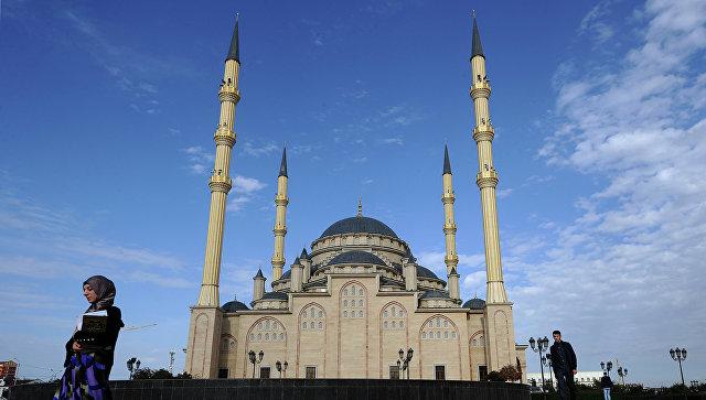Власти Чечни ищут родственников девочки Амины, находящейся в Ираке