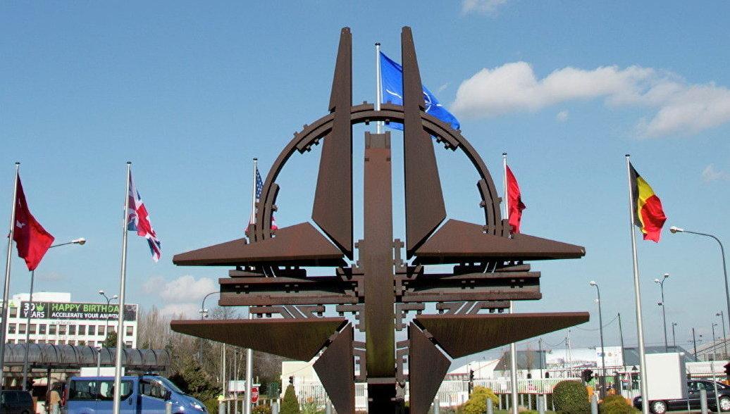 Черногорская оппозиция собрала подписи за референдум о членстве в НАТО