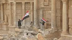 Бойцы армии САР развернули сирийские флаги в центре Древней Пальмиры
