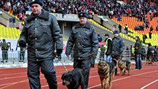 Сотрудники правоохранительных органов следят за порядком на матче по футболу. Архивное фото