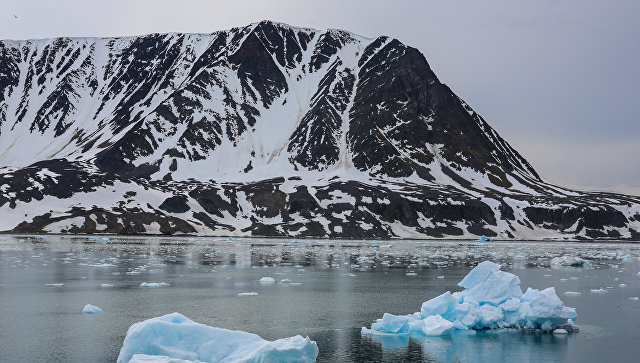 Российская Федерация летом представит ООН заявку наарктический шельф