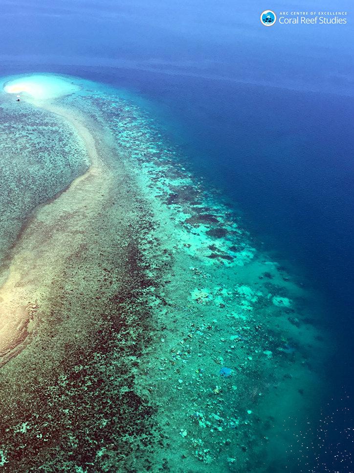 Вид с воздуха на обесцвеченный Большой Барьерный риф в Австралии