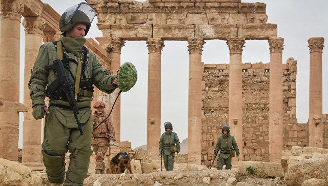Российские саперы разминируют историческую Пальмиру и жилые кварталы