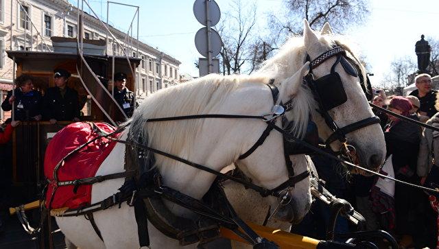 Встолице отрепетировали парад трамваев