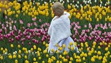 Посетительница на открытии выставки Парад тюльпанов в Никитском ботаническом саду в Крыму