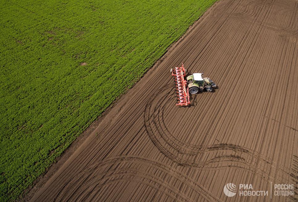 Весенняя посевная в Краснодарском крае