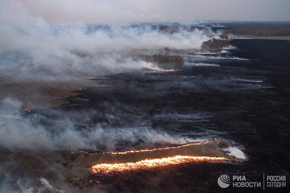 РежимЧС действует вСибири из-за лесных пожаров