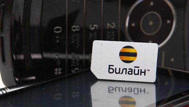 Сим-карта с логотипом Билайн. Архивное фото