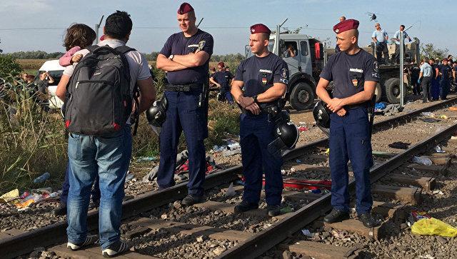Сотрудники венгерской полиции и мигранты у сербско-венгерской границы