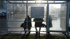 Люди на остановке общественного транспорта. Архивное фото