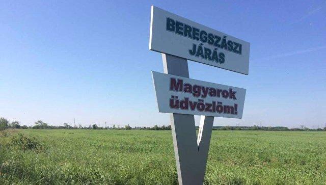 """В Венгрии прошла акция """"Самоопределение для Закарпатья"""""""