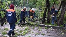 Ликвидация последствий урагана в Москве. Архивное фото