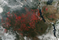 Красными точками отмечены очаги пожаров в Центральной Африке