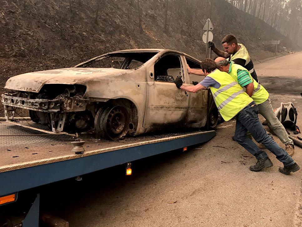 Последствия лесных пожаров в Португалии