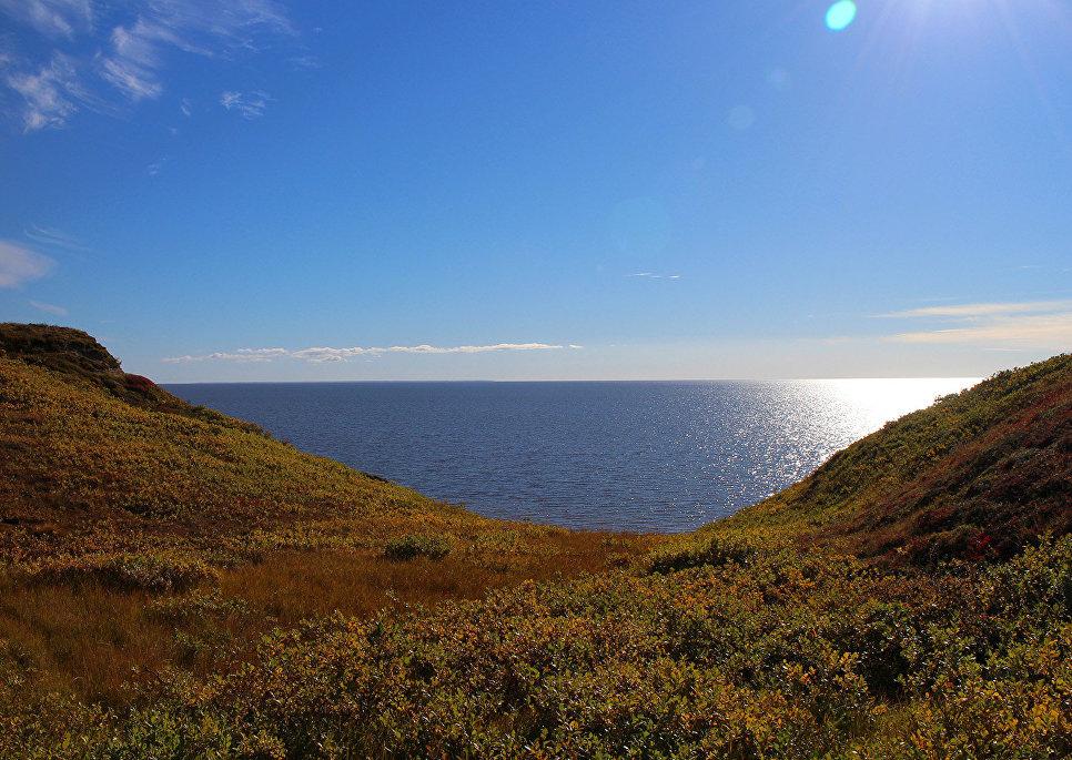 Побережье Карского моря летом. 2016.