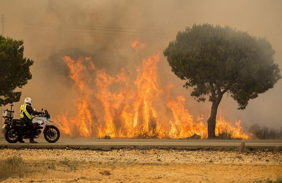 Лесной пожар на юге Испании. 25 июня 2017