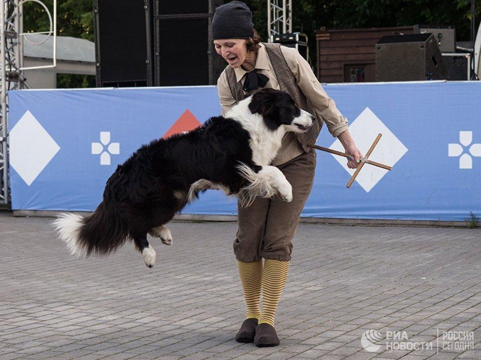 Участница фестиваля собак и людей Спутники жизни в Измайловском Парке культуры и отдыха в Москве