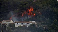 Пламя лесного пожара возле домов в Карросе недалеко от Ниццы 24 июля 2017