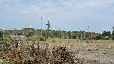 Вырубка деревьев в Мемориальном парке у подножия Мамаева кургана. 29 июля 2017