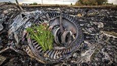 Цветы на двигателе лайнера Boeing 777 Малайзийских авиалиний, потерпевшего крушение в районе города Шахтерск Донецкой области. Архивное фото