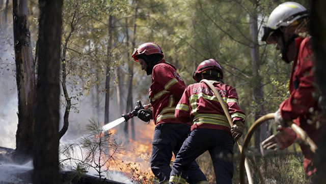 Тушение пожара, приближающийся к деревне Пукарица, недалеко от Абрантиша, Португалия. 11 августа 2017