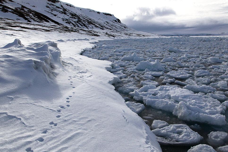 Российские ученые разработали проекты по подледному освоению недр Арктики