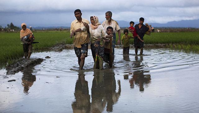 Люди из народности рохинджа проходят рисовые поля после перехода бангладешской границы. 1 сентября 2017