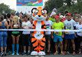 В забеге на дистанции 1 и 5 километров приняли участие все желающие поддержать редких диких кошек
