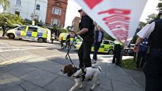 Полиция у станции метро в Лондоне. Архивное фото