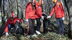 Более 50 тысяч человек приняли участие в акциях Года экологии в Крыму