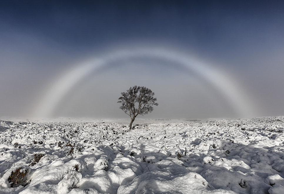 Работа участника конкурса Weather Photographer of the Year 2017