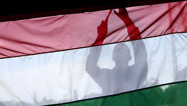 Мужчина на фоне флага Венгрии