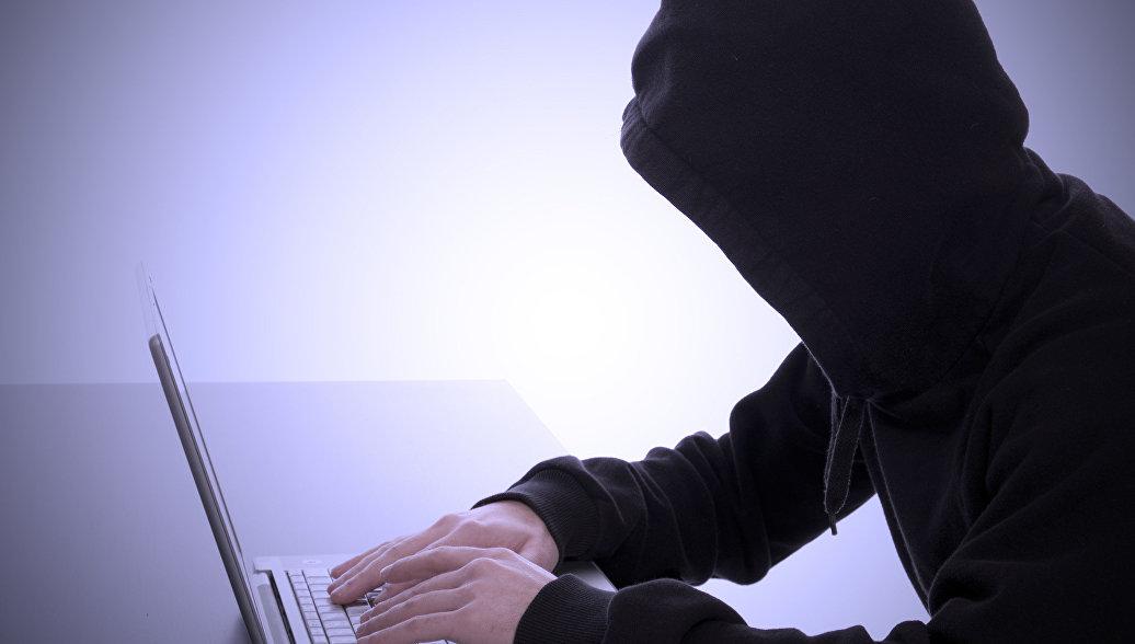 За 830 атак на сайт Администрации Курской области будут судить воронежского школьника