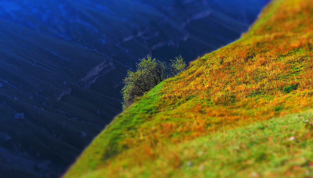 Ввысокогорьях Дагестана будет создан природный парк «Хунзахский»
