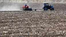 Сельскохозяйственный работы. Архивное фото