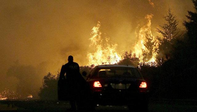 Сотрудник правоохранительных органов блокирует дорогу во время пожара в Санта-Розе, Калифорния, США. 9 октября 2017