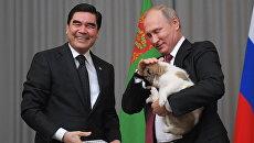 Президент Туркмении, председатель кабинета министров Туркмении, Гурбангулы Бердымухамедов и президент РФ Владимир Путин с щенком породы алабай. 11 октября 2017