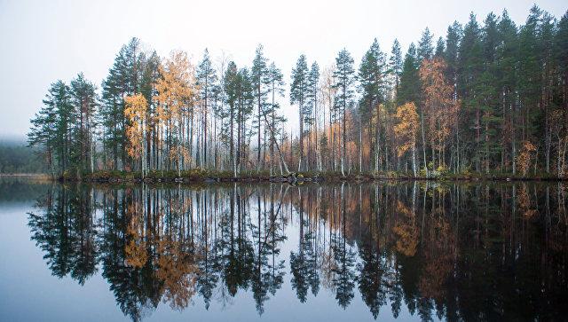 Двое петербуржцев замерзли наберегу Ладожского озера