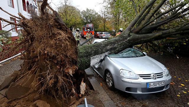 ВГермании из-за урагана ограничено железнодорожное движение